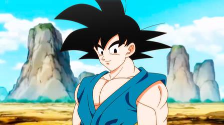 Goku  Final DBZ