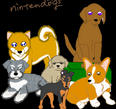 Nintendogs - Lab and Friends by charizard2000