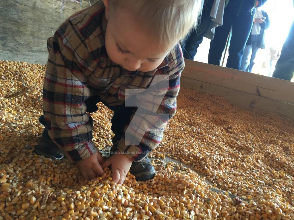 Corn Pit (CP1) by TrulyMadIrresistible