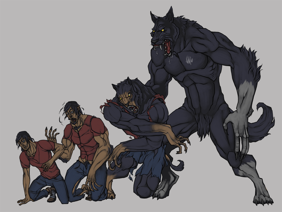 Werewolf Transformation by SlainDragon on DeviantArt