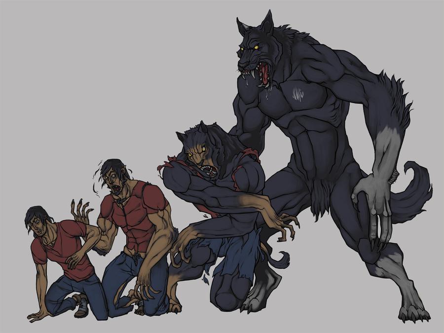 Werewolf Transformation by SlainDragon
