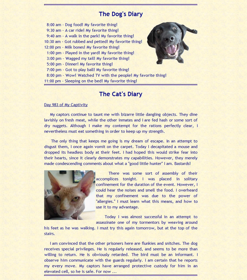 Cat Vs Dog Daily Diary