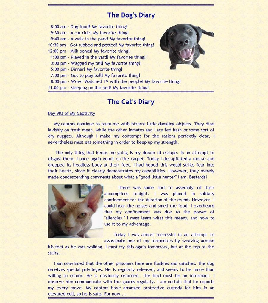 Cat Vs Dog Daily Diary