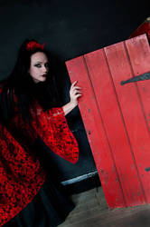 The Red Door - Amaranth by karohemd
