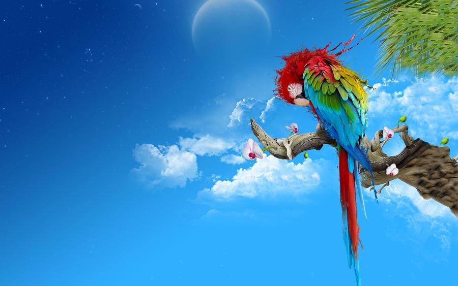 Modded Parrot