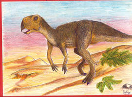 Psittacosaurus by Rood-producoes