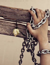 released my hand by sara-m