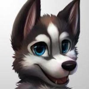 JJDixonWinchester's Profile Picture