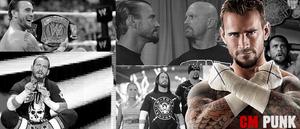 WRESTLING BANNERS: 2. CM Punk