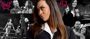 WRESTLING BANNERS: 9. AJ Lee by CreamCrazy