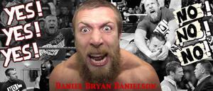 WRESTLING BANNERS: 10. Daniel Bryan Danielson