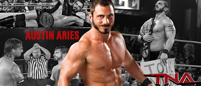 WRESTLING BANNERS: 13. Austin Aries by CreamCrazy
