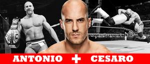 WRESTLING BANNERS: 21. Antonio Cesaro