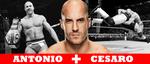 WRESTLING BANNERS: 21. Antonio Cesaro by CreamCrazy