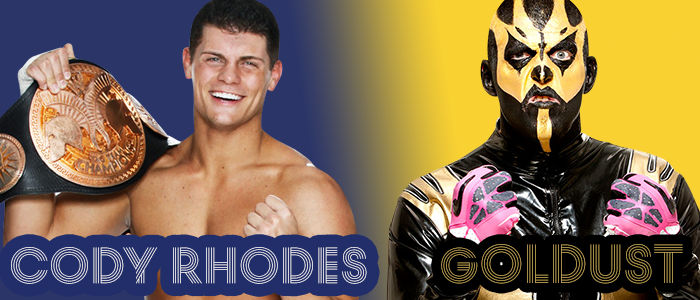 WRESTLING BANNERS: 33. Cody Rhodes And Goldust
