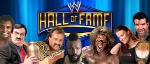 WRESTLING BANNERS 34: WWE Hall Of Fame 2014 Class by CreamCrazy