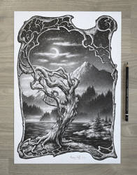 Moon Lake Tree