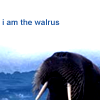 I Am The Walrus by lost-her-marbles