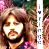 i luff ringo by lost-her-marbles