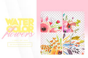 Watercolor Flowers / Vectores by GlossyResources