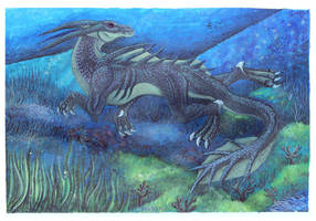Reef Dragon by MSO-Hessai