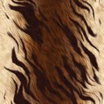 Animal Fur Tiger Texture Large