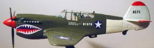 Curtiss P 40 Fighter Plane