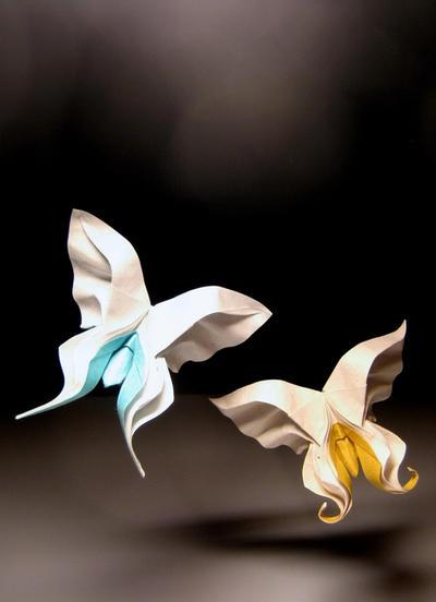 Origami Butterflies by HTQuyet