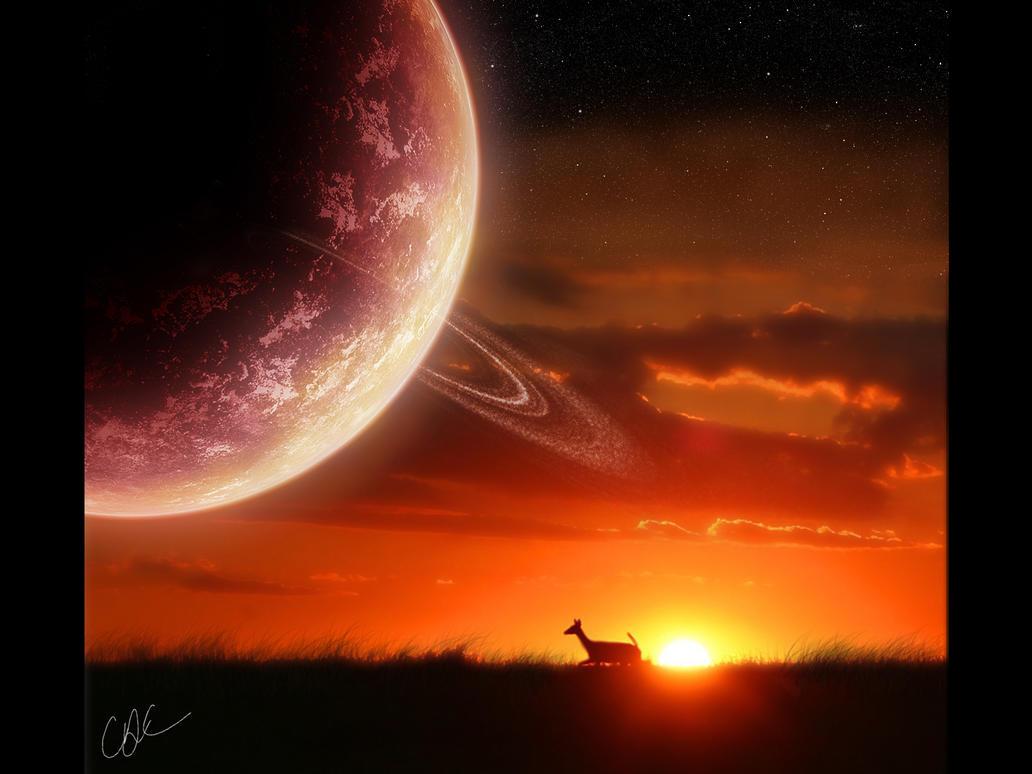 Sunset by dilekt