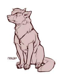 Jag the Wolfshep