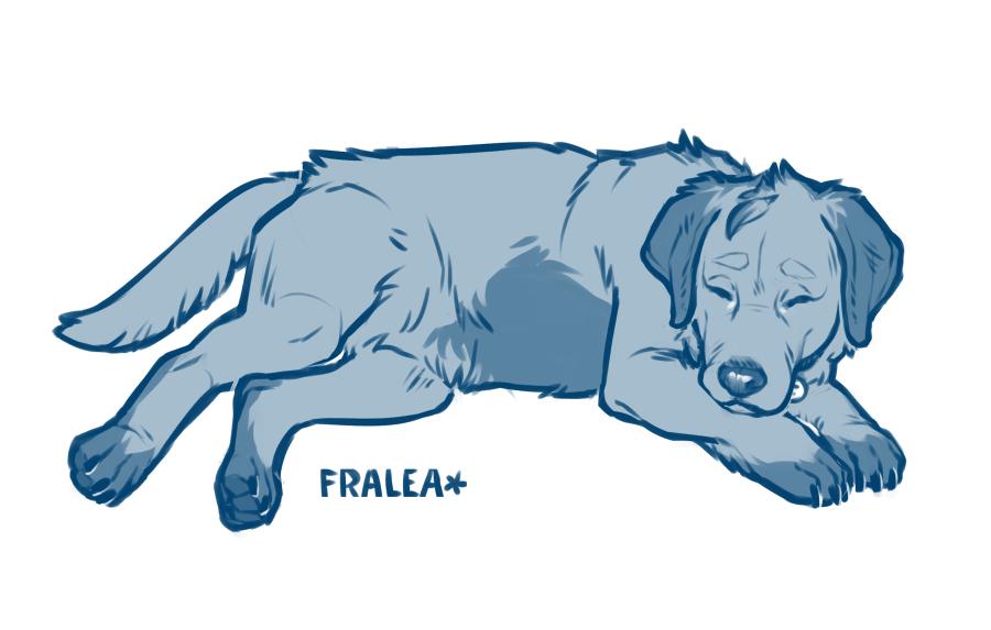 Lance the Goldador by fralea