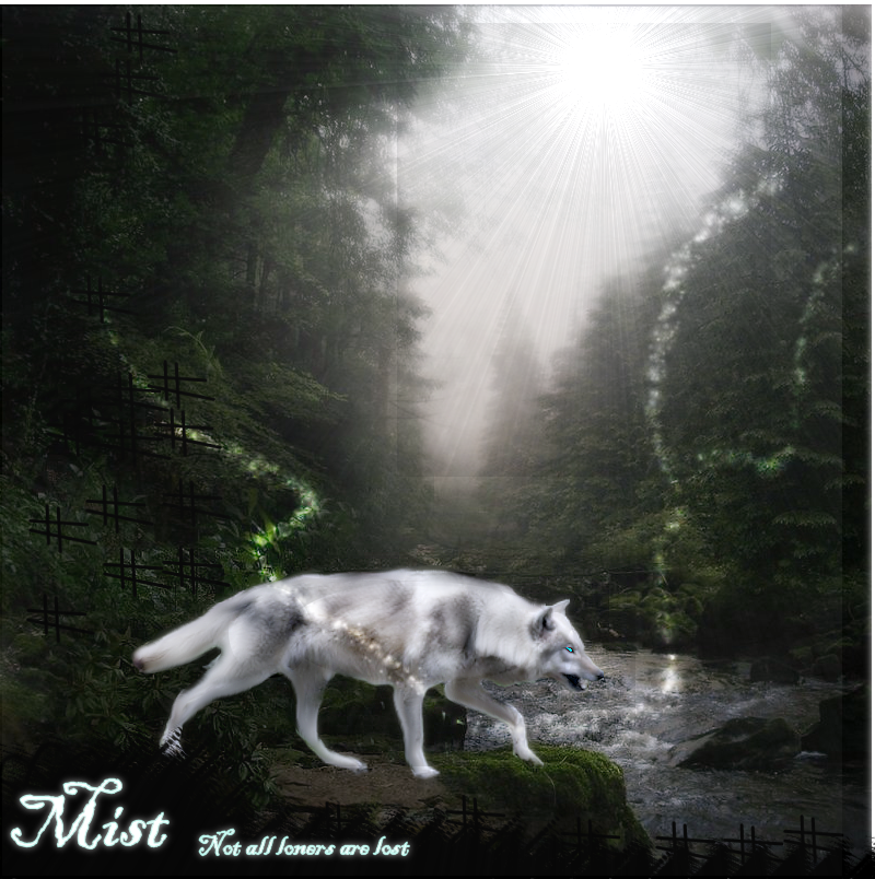 ^ Twilightstars ^ Wolves Mist_Manip_by_xTwisted_Mind