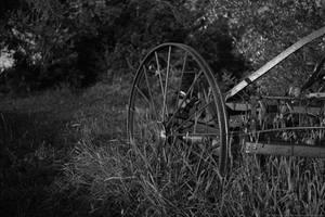 Wheel in the field by KarabansRaven
