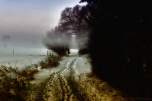 Winter-2012 in Germany