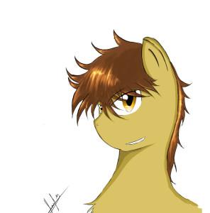 Stormkestrel's Profile Picture