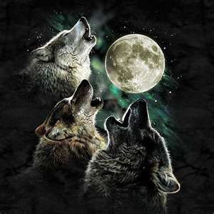 wolfs by cottoncandy123