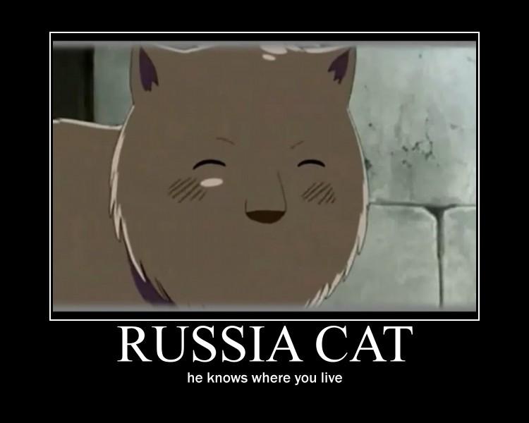 Russia cat demotivator by kurosakishida