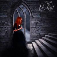Black Rose by skyleaf