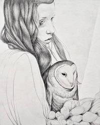 Owl Drawing by MichaelShapcott