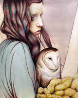 The Girl and the Owl by MichaelShapcott