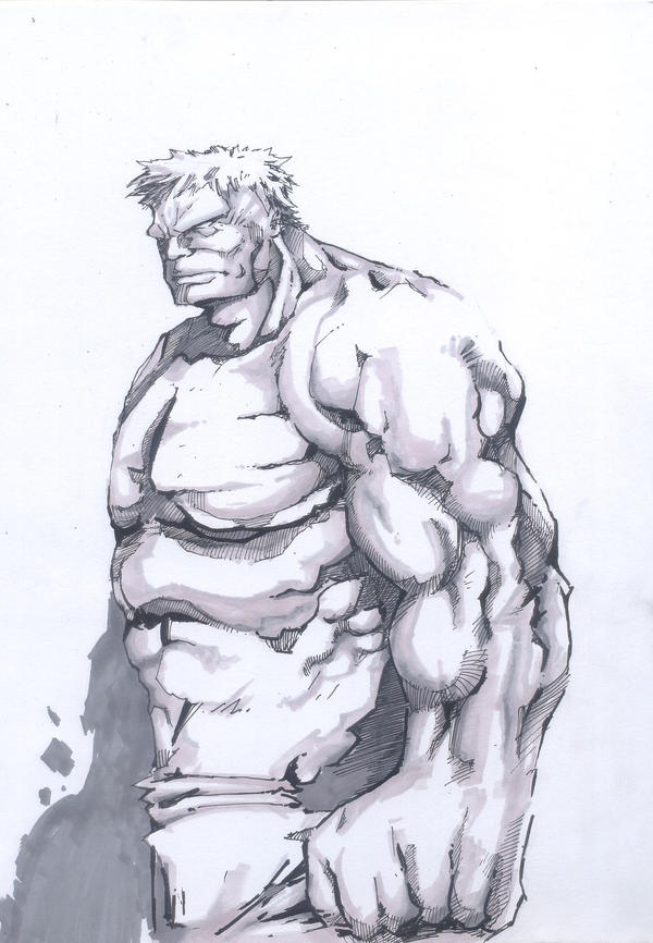 hulky steady by albakaziy