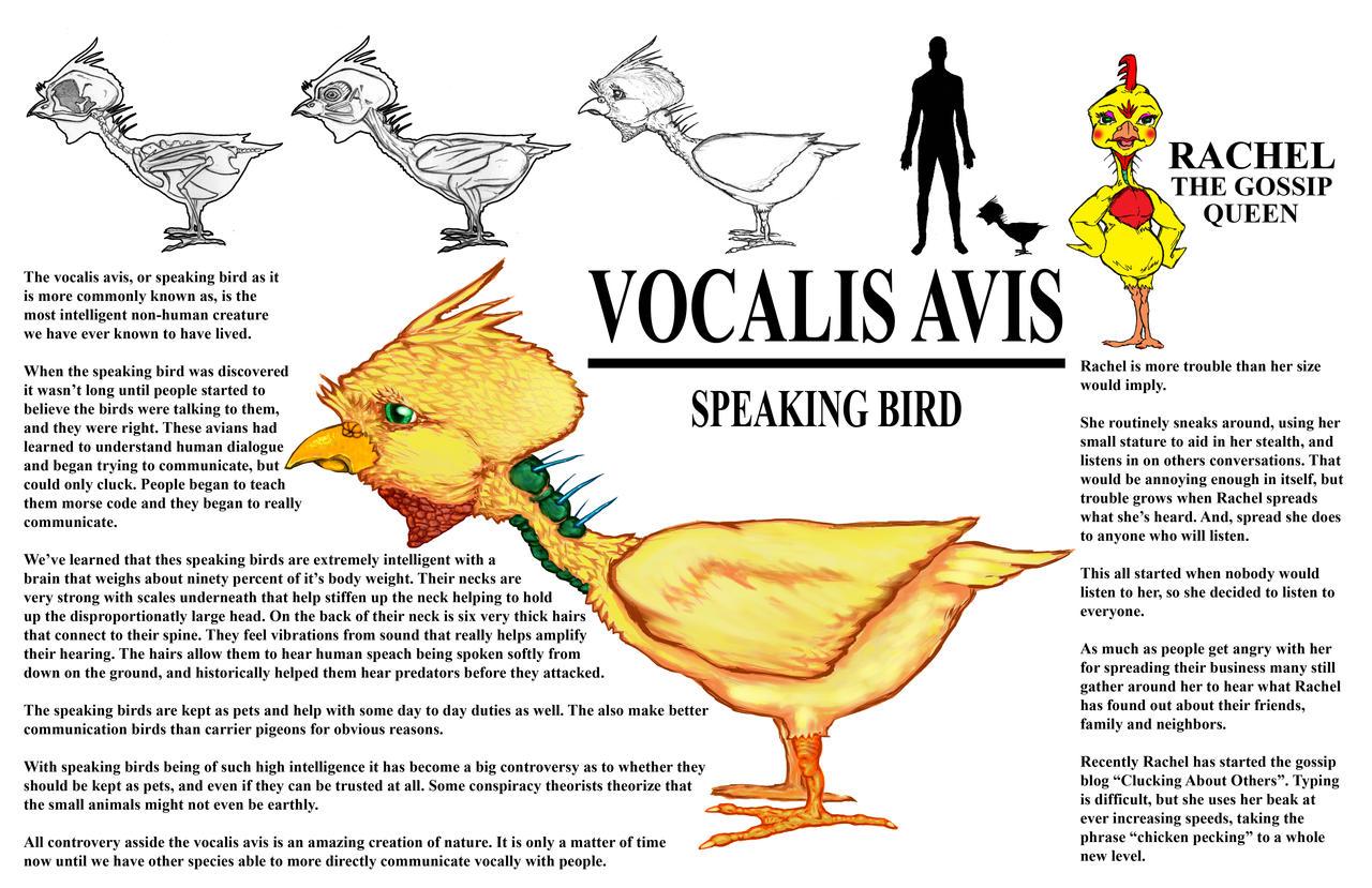 speaking bird vocalis avis by jmarcdodsonjr on deviantart. Black Bedroom Furniture Sets. Home Design Ideas