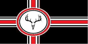 Dsflag