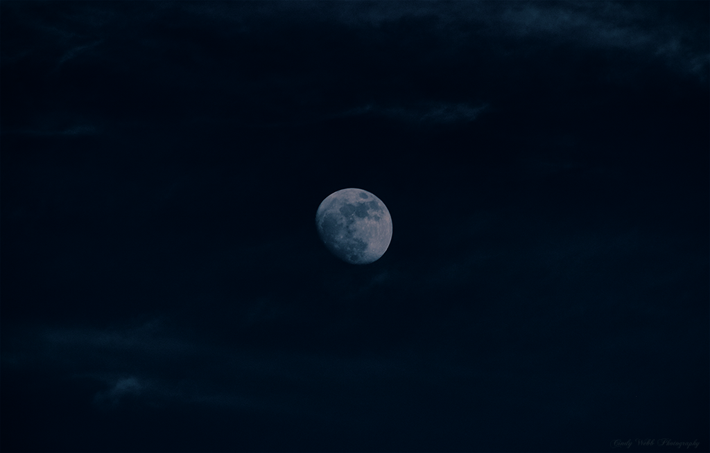 Moon by cindywebbphotography