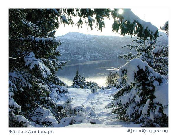 Winter Landscape by bjoe