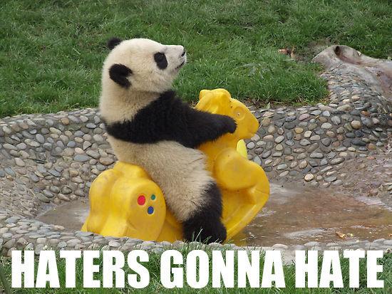 Rock it, Panda, ROCK IT! by steinonipanda