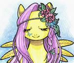 Gentle pony