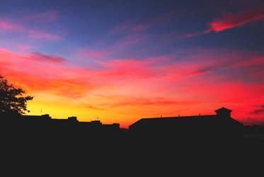 Pink Sunrise by Sarah-BK