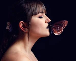 Butterfly Kiss II