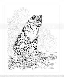Snow Leopard Overlooker